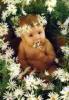 th_beba_cvijece.jpg